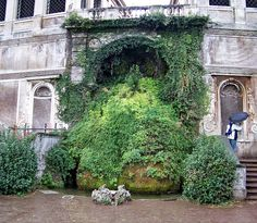 Overgrown fountain on the walls of the Palatine Hill overlooking the Forum. Rome, Italy