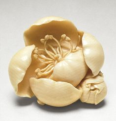 Tsukamoto Kyokusai, Cherry Blossom and Bud, late 19th-early 20th century Netsuke, Ivory with light staining