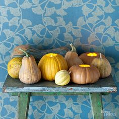 Gourd and Pumpkin Lights- No scary faces needed on these Jack-o-lanterns! Grab some little pumpkins and gourds this fall at Schuster's and create your own unique design Harvest Decorations, Seasonal Decor, Pumpkin Decorations, La Danse Macabre, Pumpkin Display, Pumpkin Door Hanger, Decoration Entree, Diy Inspiration, Autumn Lights