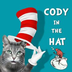 CAT CHAT: Happy Birthday To YOU Dr.Seuss!