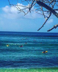 Surfers en Herbe  #tartane #plagedessurfers #surfersparadisebeach #beautifulisland #ig_martinique #ig_caribbean_sea #ig_captures #seaandsunaddict #caribbeanlifestyle #lovemyislandlife #jenemenlasseraijamais by vn972 http://ift.tt/1PI0tin