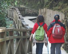 8 Visually Impaired Perspectives On Travel Travel And Leisure, Travel Tips, All About Vision, Travel Information, North Face Backpack, Dream Vacations, Places To See, Perspective, Articles