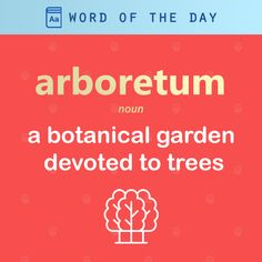 (n) : a botanical garden devoted to trees