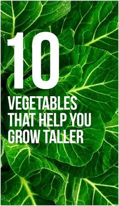 There are some vegetables that help you grow in height. Want to know what vegetables can help you grow taller? Then here is a list you can ... #vegetables #growtaller