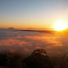 This sensational sunrise shot of a sea of mist over Canberra was captured by Instagrammer davar91