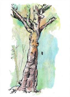 tree Pen & Ink Drawings - Bing Images                                                                                                                                                                                 More