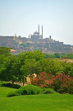 #Cairo , #Egypt