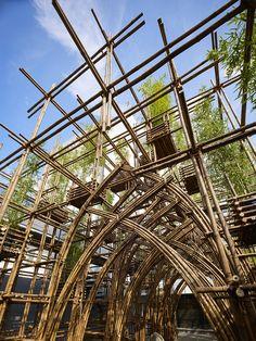 Bamboo Forest,© Yoshifumi Moriya