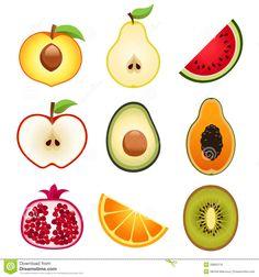 vector - fruits