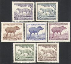 Paraguay 1961 Independence/Puma/Tapir/Wildlife/Nature/Cats/Animals