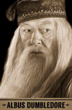 Albus Dumbledore, Transfiguration professor, Headmaster of Hogwarts.
