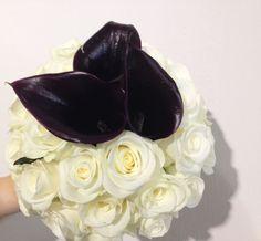 Blumenstrauß, weiße Rose, dunkle Callas