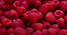 Growing Berries: How to Plant a Berry Patch (Strawberries, Blueberries, etc. Chocolate And Raspberry Tart, Raspberry Ice Cream, Raspberry Tarts, Raspberry Ketones, Red Chocolate, Raspberry Sauce, Natural Protein Powder, All Berries, Organic Maple Syrup