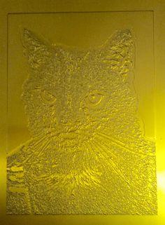 Polymeerplaat. Lichtgevoelige kunststof laag wordt belicht met een zwartwit film en daarna uitgewassen.