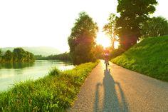 ❕ Ab Juni kannst du direkt in unserem Hotel dein City oder Mountain 𝐄-𝐁𝐈𝐊𝐄 von PAPIN - Rent a Bike mieten. 🚲🎋 Einfach direkt bei unserer Rezeption oder unter office@palais26.at anfragen. #ebike #palais26villach #stayinstyle 📸 Region Villach - Faaker See - Ossiacher See Parks, Country Roads, Day, Office, Juni, Stilt House, Bike Trails, Villach, Slovenia