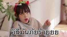 Crazy Funny Memes, Wtf Funny, Funny Mems, Blackpink Memes, Funny Captions, Me Too Meme, Blackpink Jisoo, Jaehyun, Lol