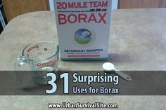 31 Surprising Uses for Borax                                                                                                                                                                                 More