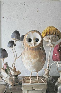 Mister Finch: New Anthroplogie store.........