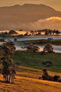 Mount Bellenden Kerr - Queensland, Australia