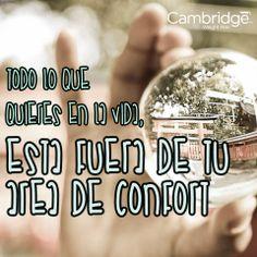 #confort #cita #sueños #cwp