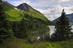 14. Carter Lake & Crescent Lake Trail - Kenai Mountains