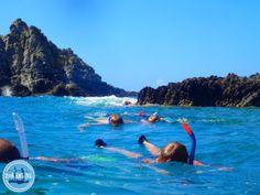 excursies op kreta griekenland blauw snorkel water - Zorbas Island apartments in Kokkini Hani, Crete Greece 2020 Heraklion, Most Beautiful Pictures, Hani, Outdoor Decor, Crete Greece, Island, Apartments, Blog, Single Men