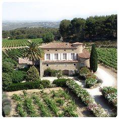 VINS DE BANDOL - DOMAINE DE LA TOUR DU BON. #sun #seasnowsun #tourisme #tourism #france #pacatourism #pacatourisme #PACA #provencal #tourismpaca #tourismepaca #vin #wine #oenotourisme #vitivinicole #vigne #raisins #grapes #vineyards #cave #tourdubon #bandol #domaine