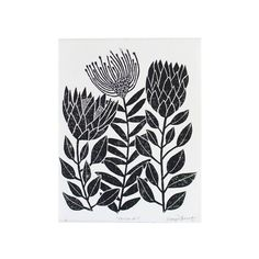 Protea Mix – Lino Print Protea Art, Protea Flower, Black Oil, Art Projects, Project Ideas, Pyrography, Line Drawing, Hand Carved, Screen Printing