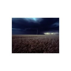 Lightning Flashes Above a Kansas Wheat Field Photographic Wall Art... ($40) ❤ liked on Polyvore featuring home, home decor, wall art, photography wall art and photographic wall art