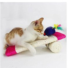 Stock Show 1Pc Pet Cats/Kitty/Kitten Sisal Scratcher Scratching Pad Board Post with Mouse Shape Toys Catnip Toys *** Read more reviews of the product by visiting the link on the image. (This is an affiliate link and I receive a commission for the sales)