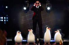 """Clipe de """"Celebrate"""", do Pitbull, de """"Os Pinguins de Madagascar"""" - http://metropolitanafm.uol.com.br/musicas/clipe-de-celebrate-pitbull"""