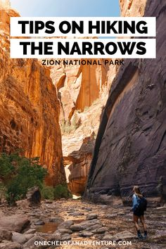 The Narrows Zion, Narrows Zion National Park, Hiking The Narrows, National Parks, Usa Travel Guide, Travel Usa, Zion Hikes, Utah Adventures, Adventure Travel