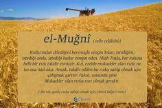 el-Muğni