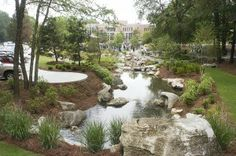 GUFC has invited innovative designers and engineers to demonstrate and discuss how trees and vegetation contribute to effective stormwater management.
