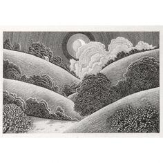 C3838 Camel Valley – Cornwall 11/90 (f) – Churchgate Gallery