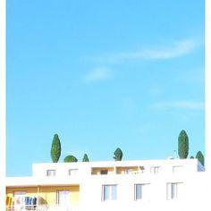 """Tree even grown in the sky"" #nature #building #sky #pastel #minimal #minimalphotography #design"