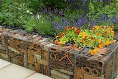 LOVE THIS USE OF GABIONS. Unique gabion wall - wire cages filled with recycled terracotta pots - handy little bug habitats created Gabion Retaining Wall, Small Garden Retaining Wall, Gabion Box, Gabion Cages, Brick Garden, Garden Walls, Retaining Wall Construction, Recycled Brick, Recycled Garden