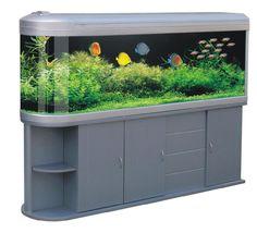 schuran seawater equipment showroom aquarien. Black Bedroom Furniture Sets. Home Design Ideas