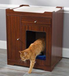 The Feline's Litter Room