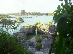 Xel-Ha Eco/Adventure Park south of Playa del Carmen, Mexico. SO MUCH TO DO AND SEE AND SO MUCH FUN!