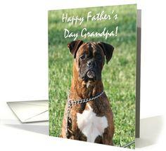 Happy Father's Day Grandpa Boxer Dog card