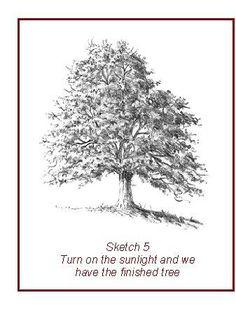 Ways   Draw Leavestree
