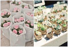 idee bomboniere piante e fiori
