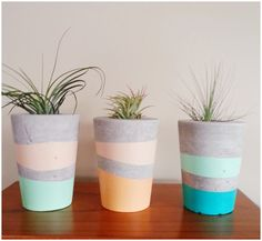 Handmade concrete airplant pots by Amelayna_designs #amelaynadesigns #concretepots #handmade #airplants Available to order