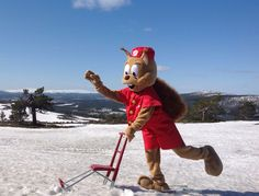 Onni Orava potkukelkkailee kohti kesää. Levitunturin huipulta on mahtavat näkymät Aakenus- ja Pallastunturiin. Break Sokos Hotel Levi