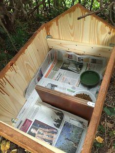 Cabane a hérissons. Diy Hedgehog House, Hedgehog Box, Garden Crafts, Garden Projects, Potager Garden, Winter House, Nature Crafts, Fauna, Outdoor Plants