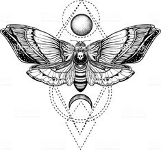 black and white deadhead butterfly on sacred geometry vector illustration Illust. - black and white deadhead butterfly on sacred geometry vector illustration Illustration , - Lunar Moth Tattoo, Head Tattoos, Body Art Tattoos, Sleeve Tattoos, Moth Tattoo Design, Tattoo Designs, Moth Drawing, Deaths Head Moth, Inspiration Tattoos