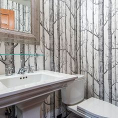 birch wallpaper with wainscoting - Google Search