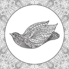 Coloring Book For Adult And Older Children Coloring Page With Birds