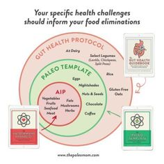 Which diet is right for you? Gut Health Protocol? Paleo? AIP? I break down how to decide what works for you in this post!  #guthealth #aip #aipdiet #guthealthdiet #guthealing #leakygut #autoimmuneprotocol Paleo Mom, Paleo Rice, Paleo Books, Microbiome Diet, Paleo Autoimmune Protocol, Guide Book, Health Diet, Diets, Dr Sarah
